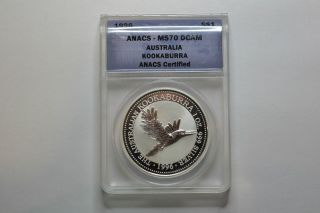 1996 Australia Kookaburra Dcam - Anacs Graded - Ms - 70 - photo