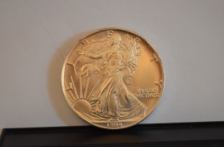 1994 1 Oz Silver American Eagle (uncirculated) photo