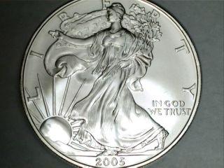 2005 Silver American Eagle photo