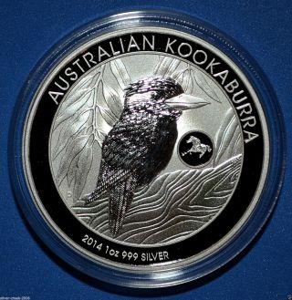 2014 Kookaburra Horse Privy 1 Oz Australian Pure Silver Coin photo