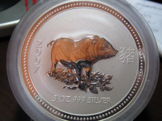 Australia - 2007 Lunar - Year Of The Pig - 5 Oz.  Ag,  - Low Mintage Of 3,  229 photo