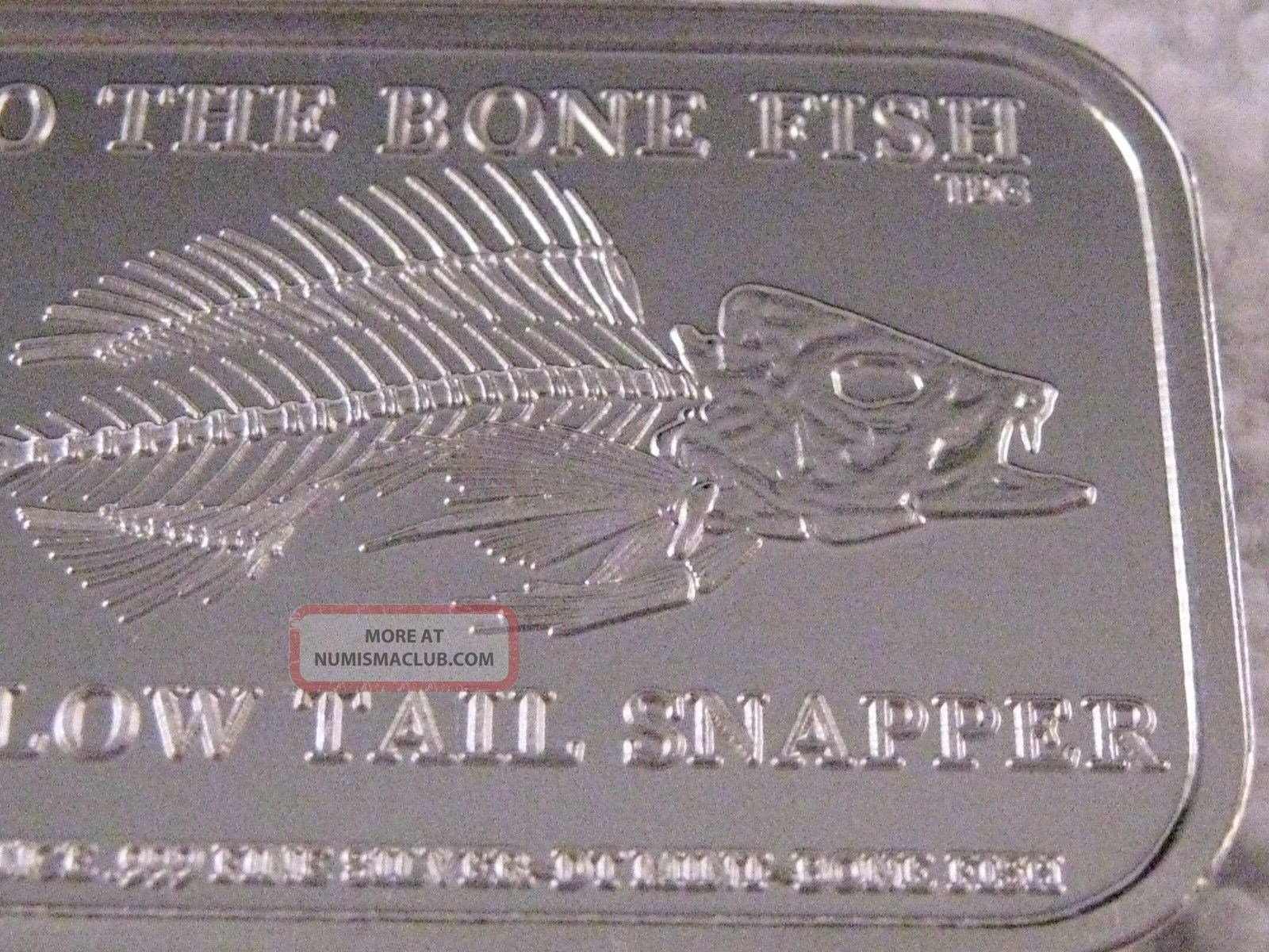 Dt Yellow Tail Snapper Bad To The Bone Fish Skeleton