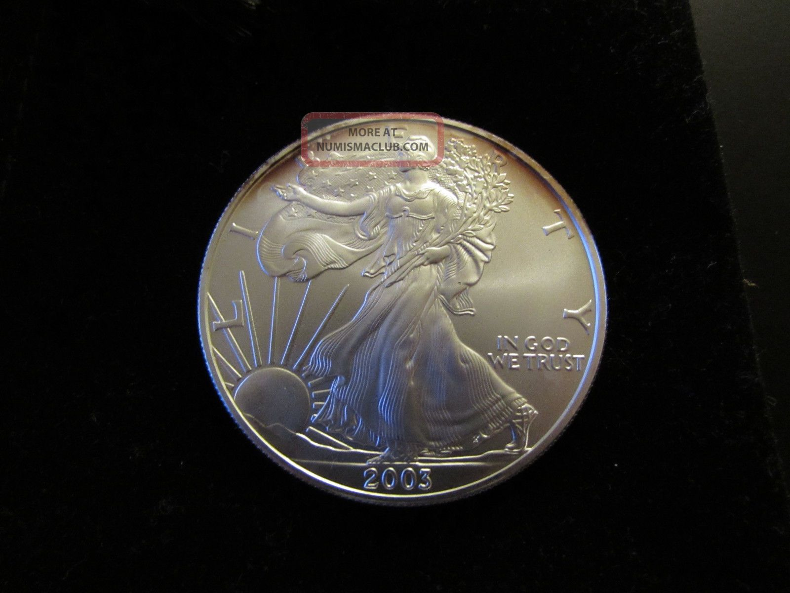 1 Oz 999 Fine Silver Round Liberty Dollar 2003