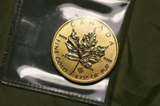 2013 1 Oz Gold Canadian Maple Leaf Coin - Brilliant Uncirculated - photo