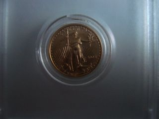 2003 Usa 5 Dollar Gold Eagle 1/10 Oz Coin photo