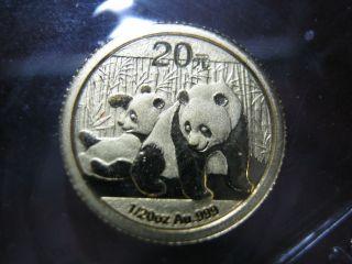 China - 2010 - Gold Panda - 1/20oz.  -.  999 Gold - photo