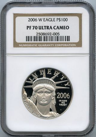 2006 - W $100 (1 Oz. ) Proof 70 Platinum Eagle Ngc Pf 70 Ucam photo