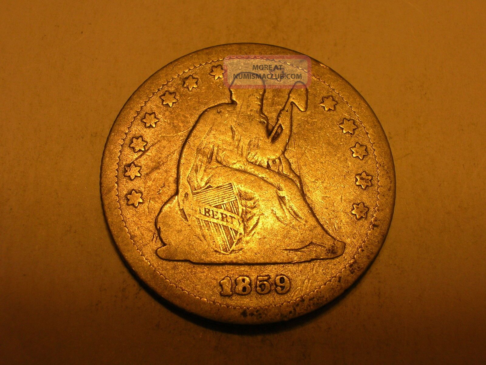 Abt coin value numbers : Clever cat names for brothers