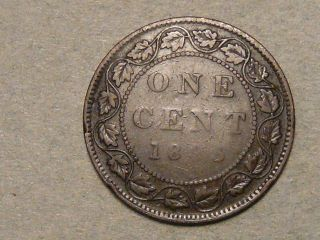 1895 Canadian Large Cent 6564 photo