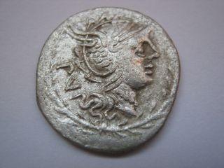 Roman Republic Denarius Of Family Lucilia,  101 B.  C. photo