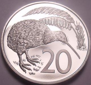 Large Cameo Proof Zealand 1979 20 Cents 16,  000 Minted Kiwi Bird photo