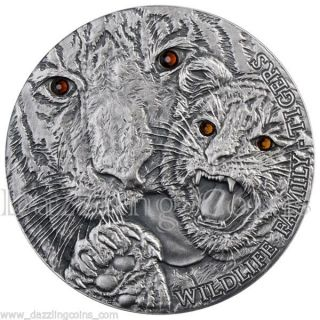 Tigers Wildlife Family Panthera Tigris Silver Coin 1$ 1 Oz Niue 2013 photo