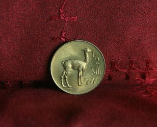 1966 Peru 1/2 Sol Deoro Brass World Coin Llama Km247 Great Details Unc Lama photo
