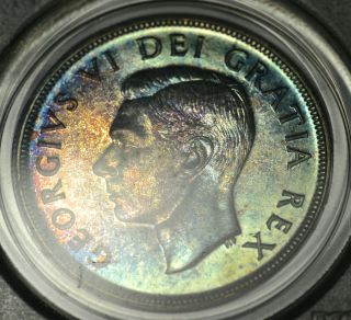 1951 Swl Dollar ($1) Pcgs Pl - 67 Pq+ Rainbow Toning - Wow photo