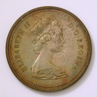 1973 Canadian Dollar - Beautifully Toned - Uncirculated photo