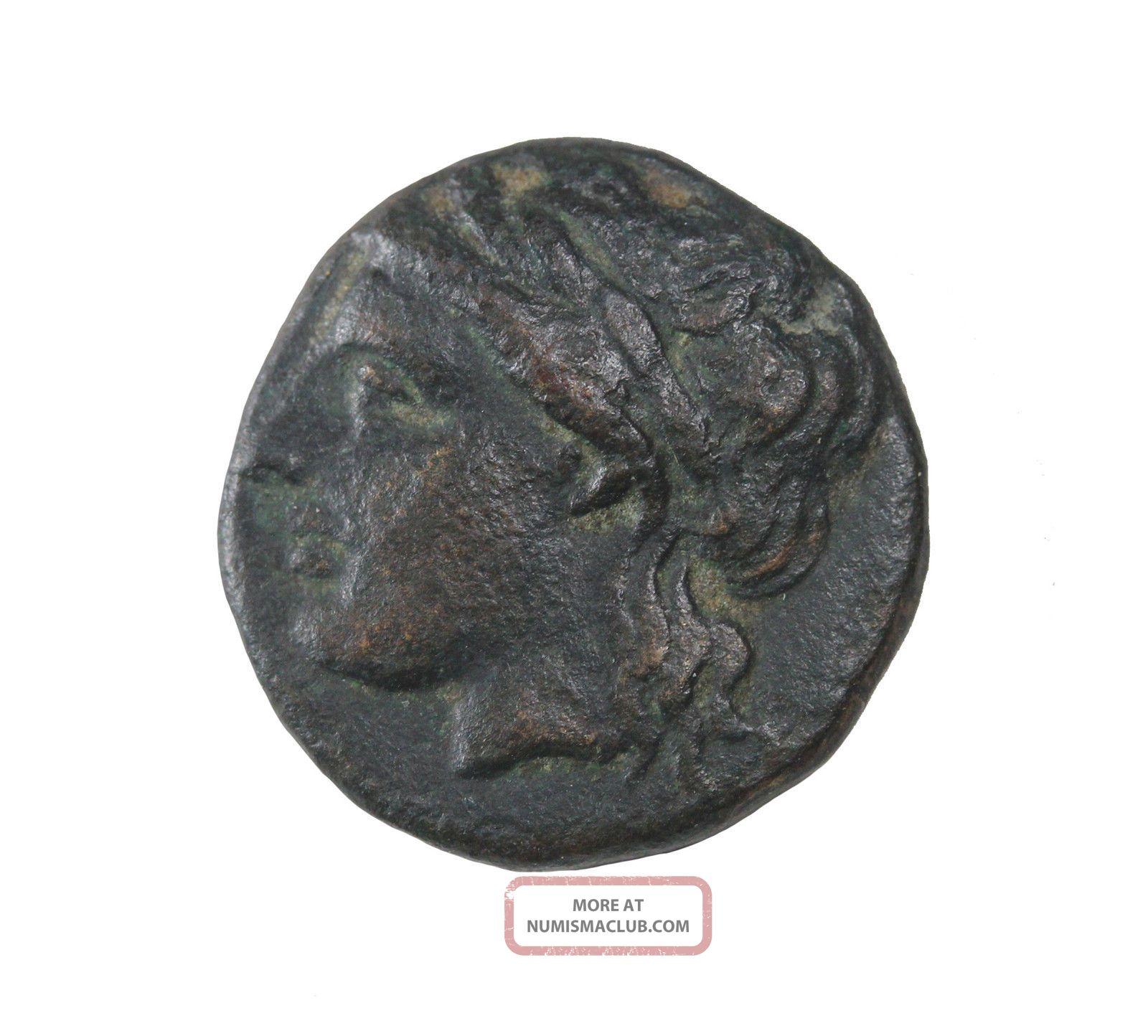 Troas Alexandria Ae15 3rd - 2nd Century Bc Ancient Greek Coin Apollo Horse Coins: Ancient photo