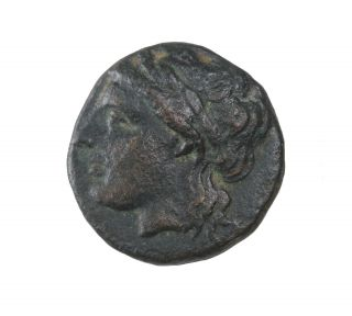 Troas Alexandria Ae15 3rd - 2nd Century Bc Ancient Greek Coin Apollo Horse photo