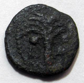 Judea Prutah Jerusalem Ancient Coin Æ Procurators M Ambibulus 9 - 12 Ad 1983 - 994 photo