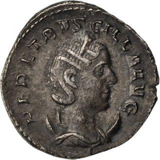 Etruscilla,  Antoninianus,  Cohen 19 photo