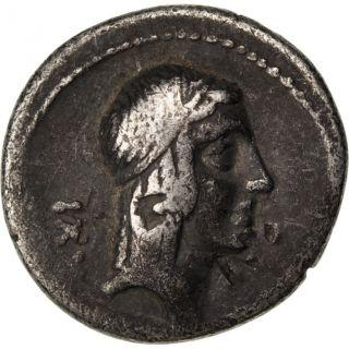 Calpurnia,  Denarius photo