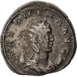 Saloninus,  Antoninianus,  Cohen 130 photo
