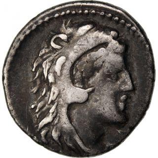 Volteia,  Denarius photo