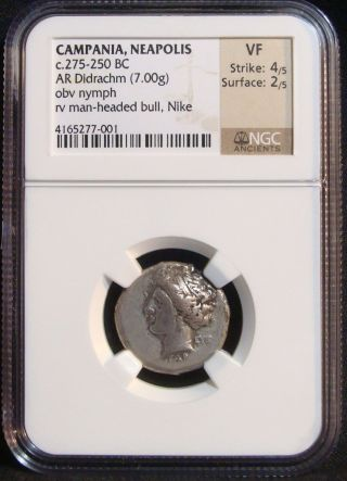 Ancient Greek: Campania Neapolis Ar Didrachm - Nomos,  3rd Century Bc.  Ngc Vf photo