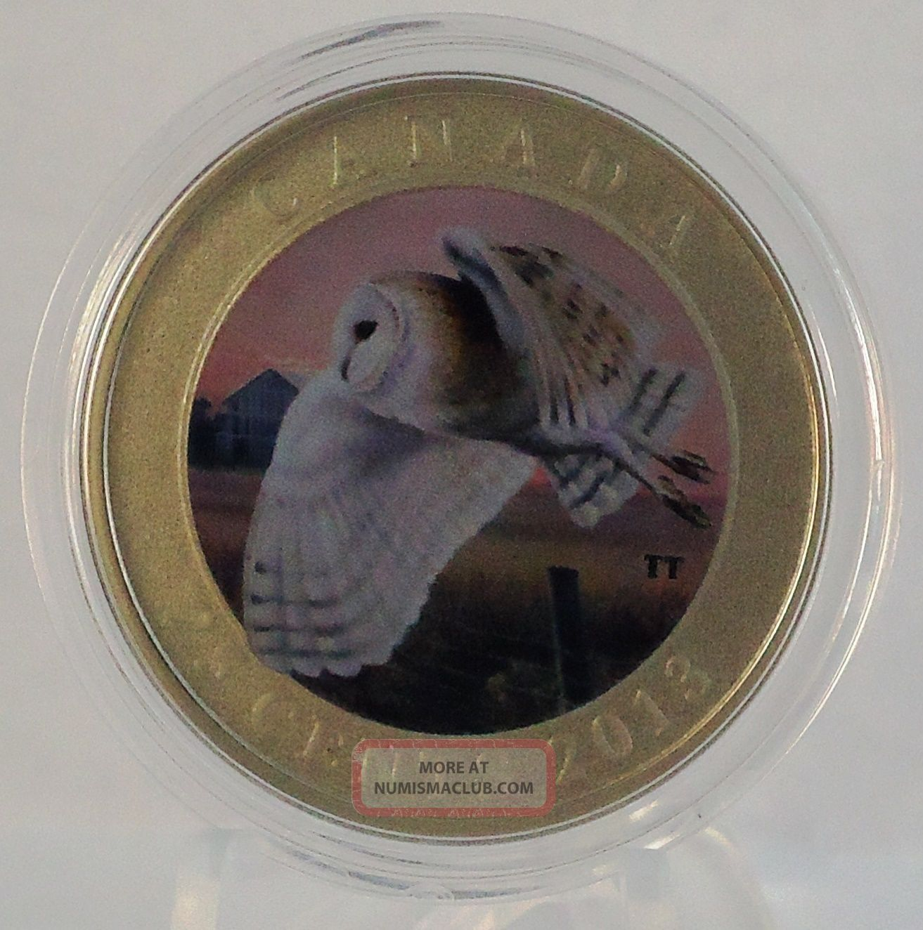 2013 Barn Owl Colored Specimen 25 Cent Coin Quot Birds Of Canada Quot Series 17 500
