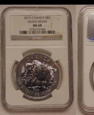2013 Canadian $5 Wood Bison 1 Oz Silver.  999 (wildlife Series) Ngc Ms - 68 Rare photo