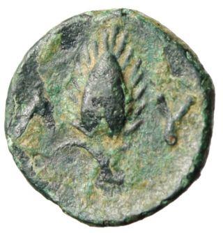 Thrace,  Lysimachia (lysimacheia) Ae11