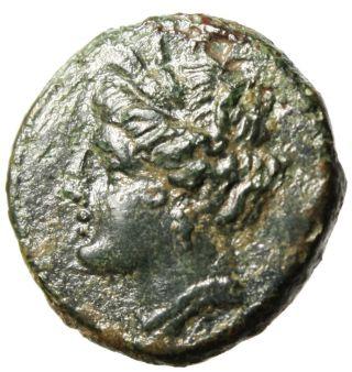 Agathokles Ae17