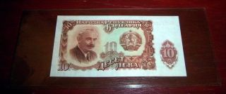 1951 Bulgaria 10 Leva Bill Uncirculated L@@k photo