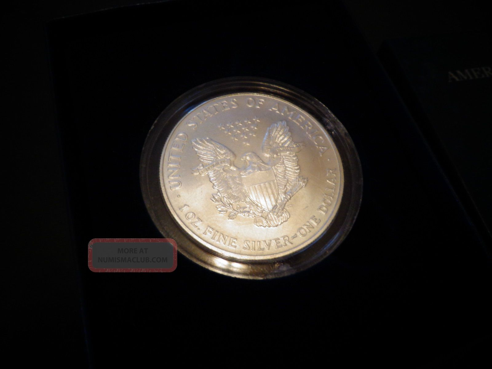 1999 Full Colorized American Silver Eagle 1 Troy Oz 1