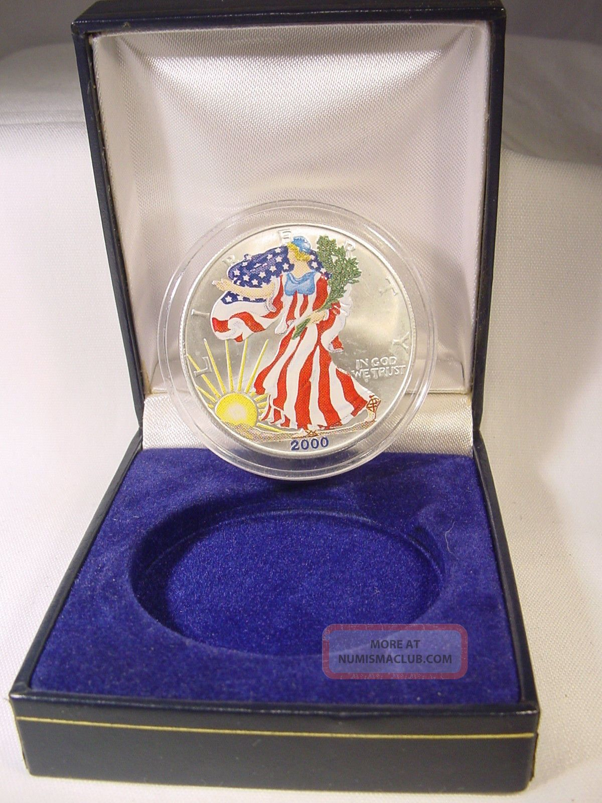 2000 Painted Walking Liberty American Eagle One Dollar