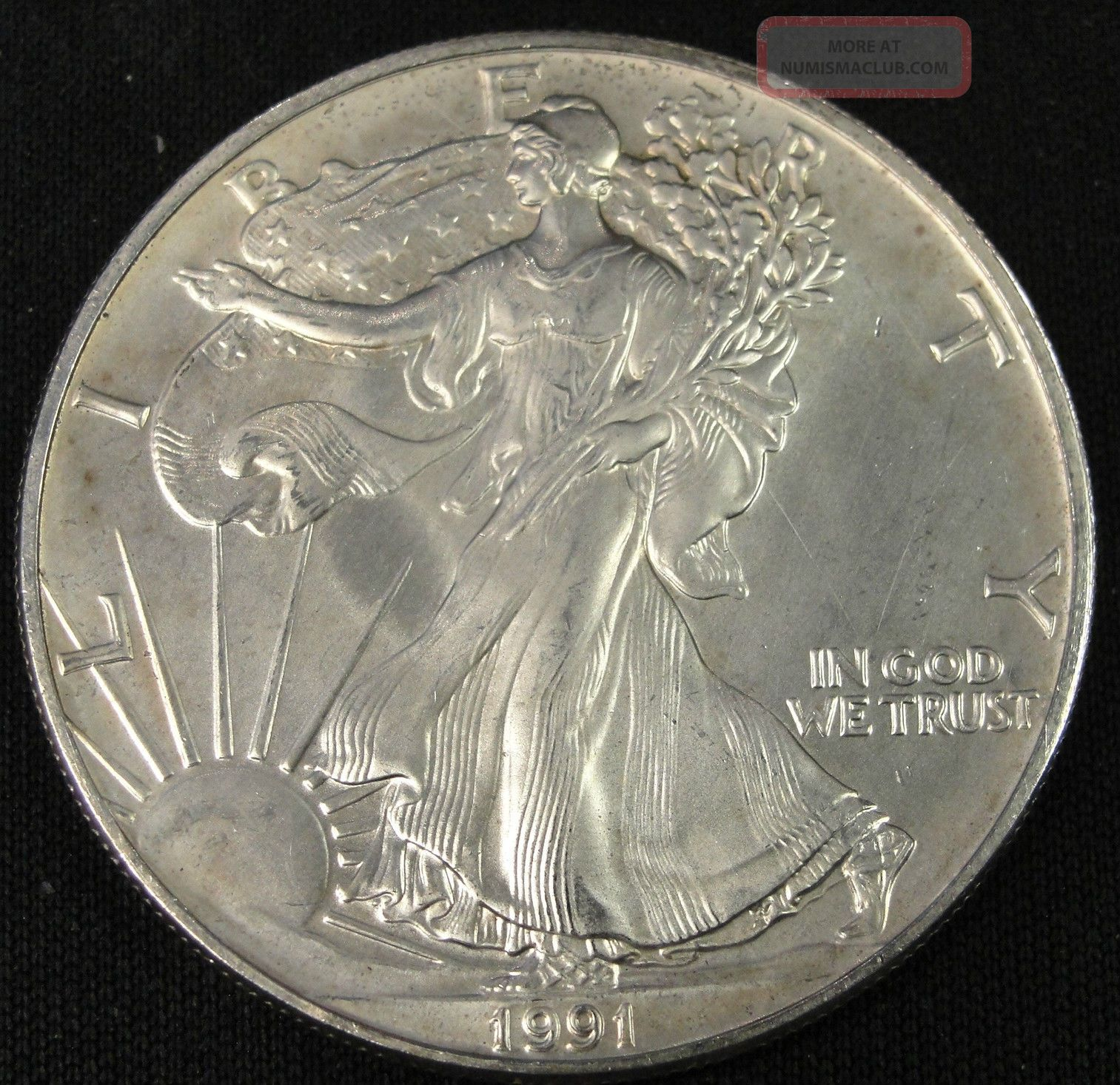 1991 American Silver Eagle Bullion Coin Key Date
