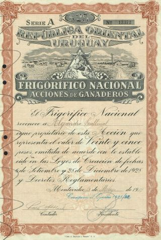 Uruguay Farm & Refrigeration Company Stock Certificate Montevideo 1939 photo