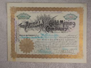 Antique 1896 Acacia Burns Morning Star Co.  Gold Mining Company Stock Certificate photo