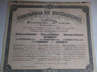 Angola Colonial Portugal 1899 Companhia Mossamedes £25 25 Shares Uncancelled Cop photo