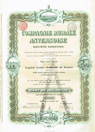Belgium Rural Cattle Company Stock Certificate 1911 photo