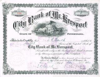 Usa City Bank Of Mckeesport Stock Certificate 1920. . .  Pennsylvania photo
