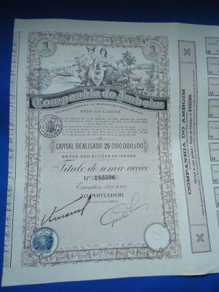 Portugal Share Companhia Amboim 100 Escudos 1927 Look Scans photo