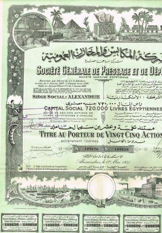 Egypt Import,  Export Company Stock Certificate 25 Sh photo