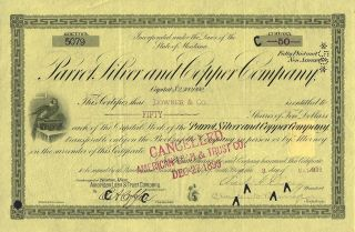 Usa Parrot Silver & Copper Company Stock Certificate 1899 Montana photo