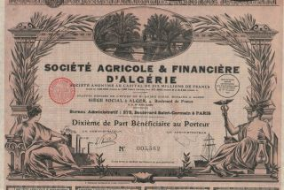 Africa Algeria Agriculture & Finance Stock Certificate 1929 photo
