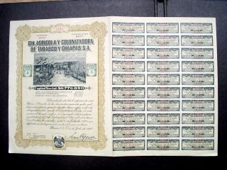 Mexico Mexican 1912 Cia Colonizadora Tabasco Chiapas Bond Share photo