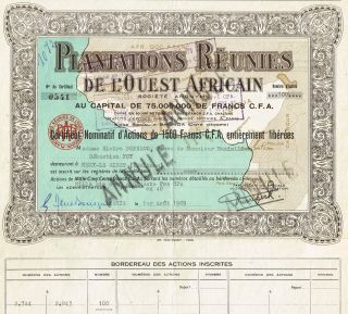 Africa Plantations Of West Africa Stock Certificate photo