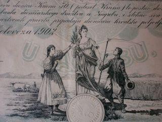 Croatia,  Share Of Croatian Agricultural Bank,  50 Kruna 1.  8.  1902,  Rare photo