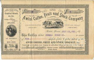 Rare Vintage Hawaii Stock Certificate:awini Coffee,  Fruit And Stock Co. photo