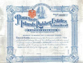 Brazil 1911 Para Marajo Islands Rubber Estates 10 Shares Uncancelled photo