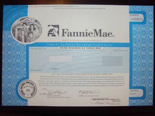 Fannie Mae Stock Certificate photo